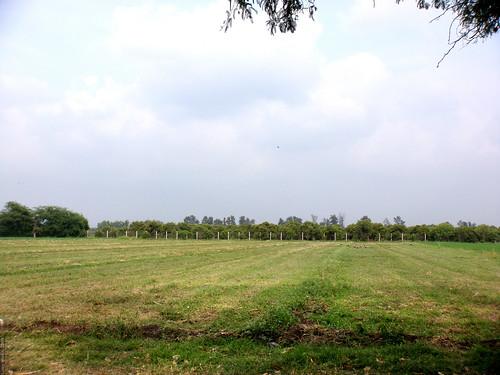 méxico mexico huerta rioverde sanluispotosi sanluispotosí elrefugio regiónmedia ciudadfernández