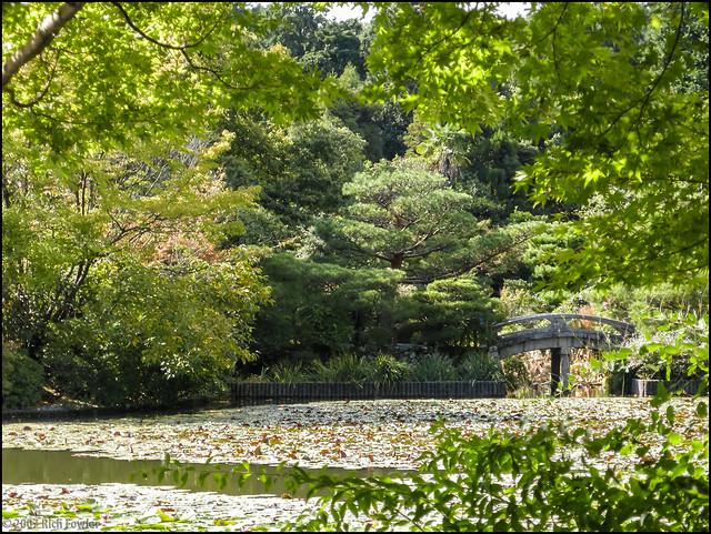 Ryoanji Grounds