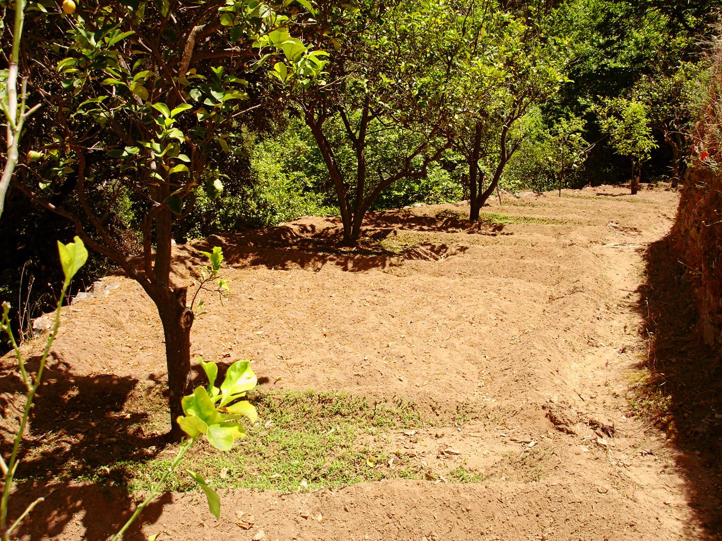 A time to garden