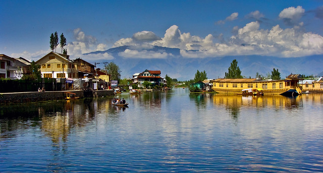 The Dal Lake ( Srinagar, Kashmir)