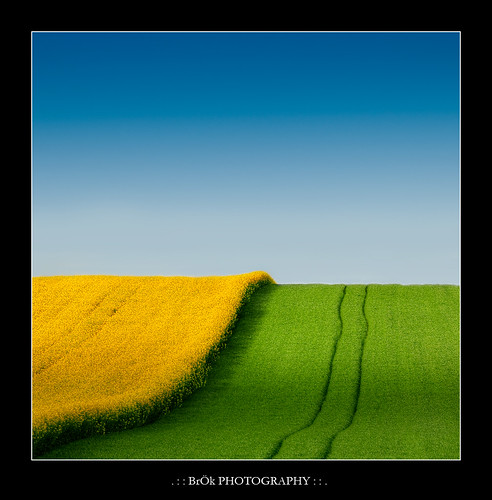 Du Jaune du bleu...et un peu de vert ! | HDR :: Vertorama