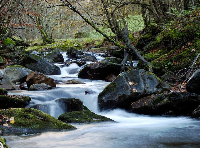 riu_vall toran