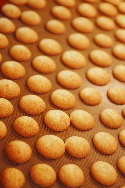 mandelbiskvier