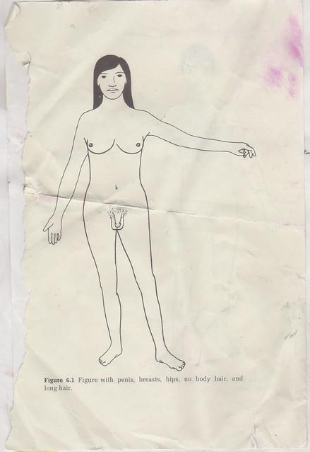 Intersexual Illustration 02