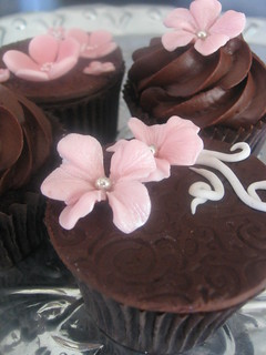 pink & brown cupcake samples