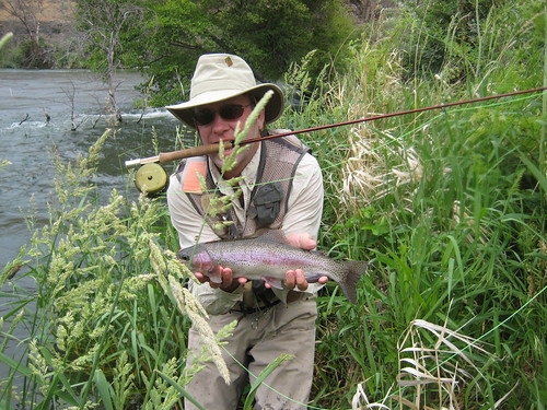 deschutes river fishing report salmonfly madness the