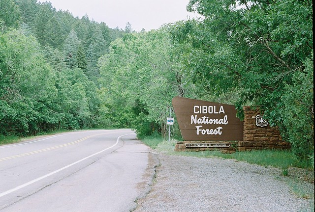 Cibola National Forest, New Mexico | Flickr - Photo Sharing!