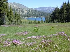 Camping Lake