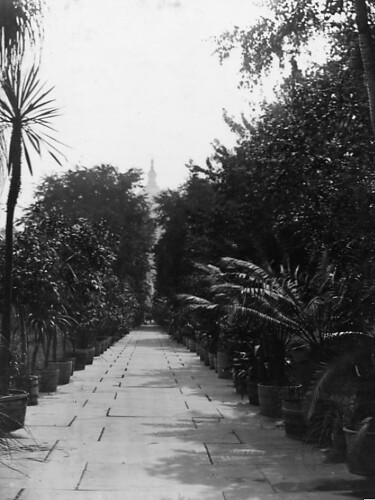 View of a walk at the US Botanic <a href=