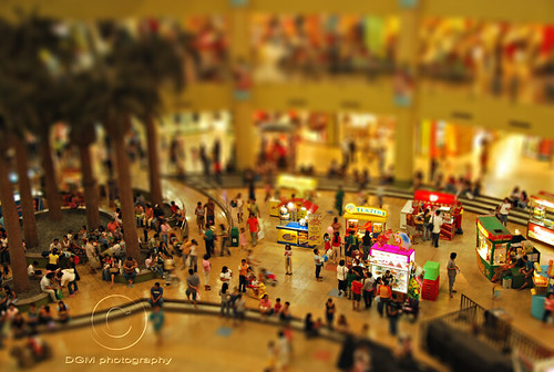Family day - Miniature