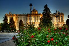 Palacio Real y rosas. Royal Palace and roses