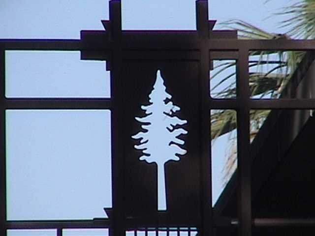WHERE IN DISNEYLAND? Post your Guess here! Pine Tree Stencil