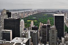 5th Avenue: New York Songlines