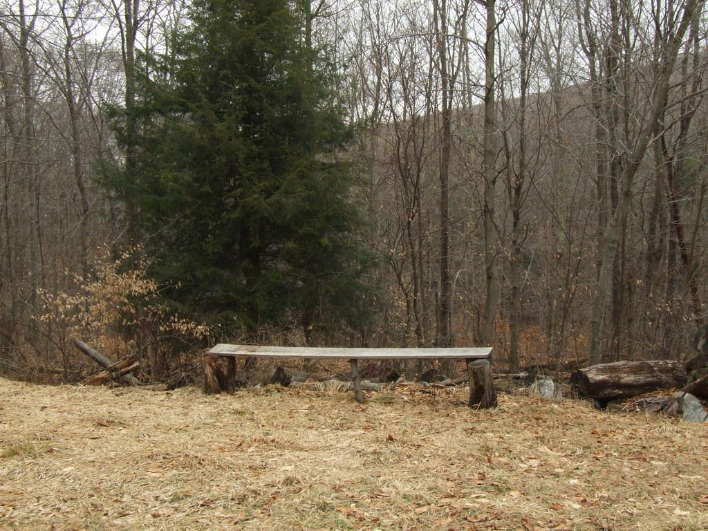 Stone camp mountain west virginia tripcarta for Camp stone