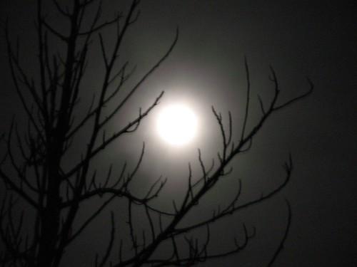 Kala Malam Bulan Mengambang.....