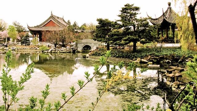 Livre Jardin Japonais – Obasinc.com
