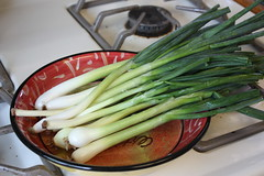Green onions from our garden