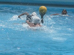 water & ball sports, water polo, swimming, sports, recreation, outdoor recreation, team sport, swimmer, water sport, ball game,