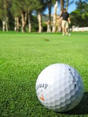 ball(1.0), grass(1.0), sports(1.0), recreation(1.0), outdoor recreation(1.0), green(1.0), golf(1.0), golf equipment(1.0), ball game(1.0), lawn(1.0), ball(1.0),
