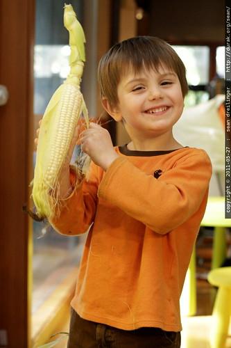aw shucks   corn on the cob for dinner