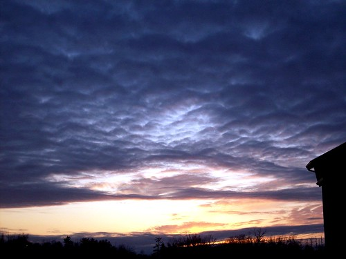 trees sunset sky clouds evening scenery springfieldmissouri theozarks rottladyhome