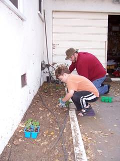 Planting vegetables