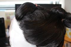 brown(0.0), brown hair(0.0), hair coloring(0.0), black hair(1.0), hairstyle(1.0), chignon(1.0), bun(1.0), hair(1.0),