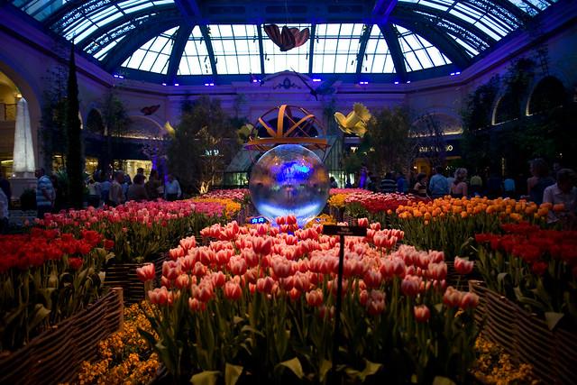 Botanical Gardens At Dusk Bellagio Las Vegas Flickr