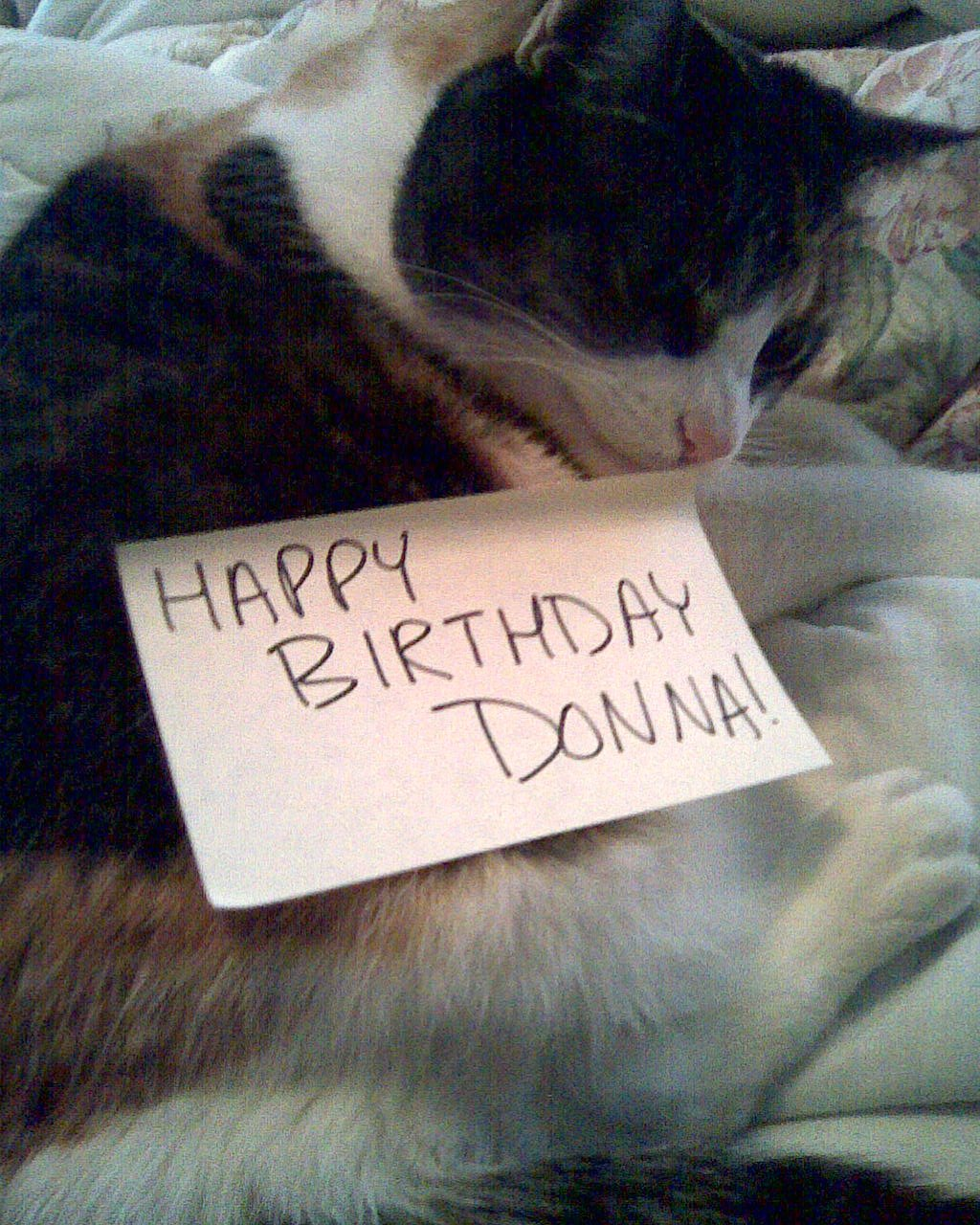 Happy Birthday To Donna!