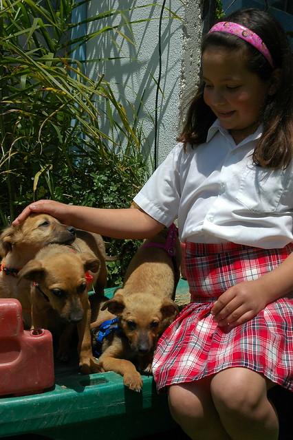 Puppies Cafe San Frnacisco