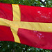 Patriot flag by Håkan Dahlström