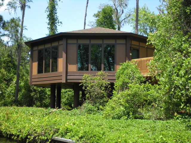 Treehouse Villas Saratoga Springs Pictures