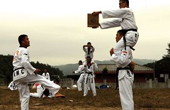 striking combat sports(1.0), contact sport(1.0), taekwondo(1.0), sports(1.0), tang soo do(1.0), combat sport(1.0), martial arts(1.0), karate(1.0), athlete(1.0),