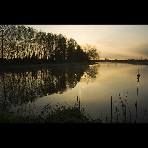 morning reflection sunrise dawn spring britishcolumbia surrey april serpentinefen serpentinefennaturereserve kvdl