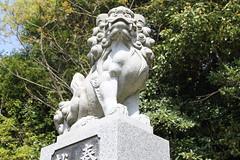 どっかの神社@石川県能登島