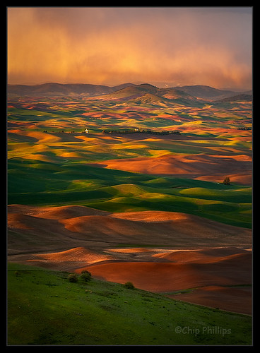 A Storm Brewing over the Palouse-Vertical
