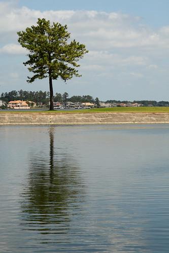 sky lake reflection tree water clouds marina texas breakwater conroe canonefs1755mmf28isusm waldenmarina