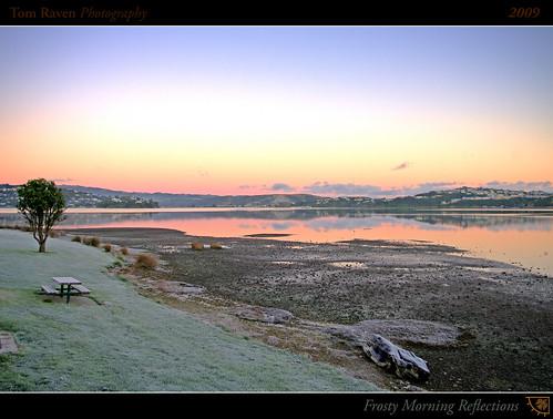 ocean light sky reflection tree ice clouds sunrise geotagged dawn bay coast frost harbour driftwood inlet motukaraka hdr picnictable pauatahanui tomraven geo:lat=41092193 geo:lon=174898438 q209