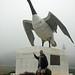 Wawa Goose by Bobcatnorth