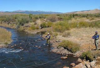 Fly Fishing the Arkansas River Valley