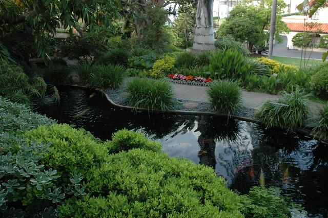 Where The Koi Wait To Take Over The World Pond Path Meditation Garden Self Realization