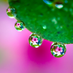 ...every raindrop carried a thought of you...
