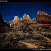 Zion National Park (6)