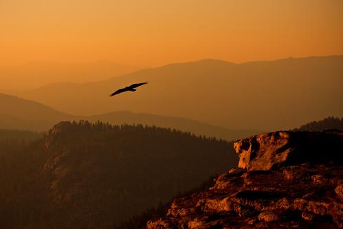 california sunset usa nature weather birds animals rock rocks 05 may 2008 kingscanyonnationalpark bigbaldy
