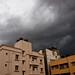 Small photo of Monsoon