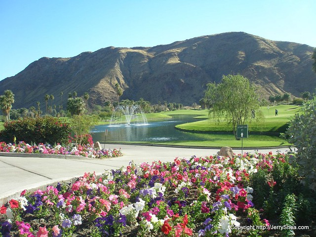 Golf Course Views-Palm Springs-15