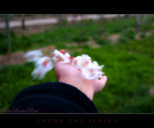 Throw the Spring !