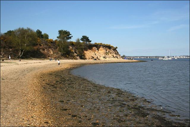 Arne beach