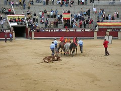 rodeo(0.0), event(0.0), equestrian sport(0.0), matador(0.0), performance(0.0), animal sports(1.0), cattle-like mammal(1.0), bull(1.0), tradition(1.0), sports(1.0), bullring(1.0), bullfighting(1.0), traditional sport(1.0),