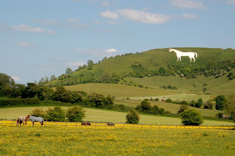 Westbury White Horse Flickr Photo Sharing